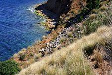Free Mediterranean Coast,  Steep Slope Royalty Free Stock Photos - 5544488