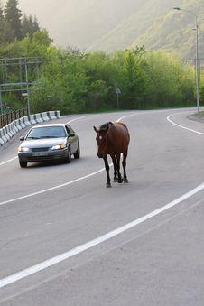 Free Highway Stock Photo - 5546740