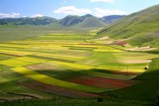 Free Castelluccio Summer Landscape Royalty Free Stock Photography - 5547207