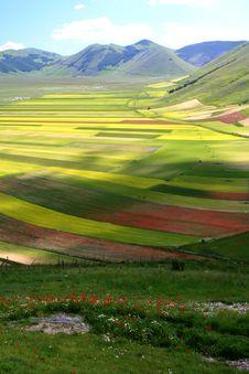 Free Castelluccio Summer Landscape Stock Photography - 5547402