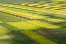 Free Coloured Fields Royalty Free Stock Image - 5547456