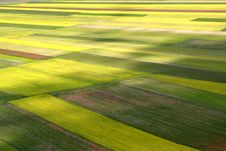 Free Coloured Fields Stock Images - 5547524