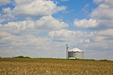 Free Early Spring Silo Royalty Free Stock Image - 5547716