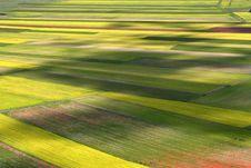 Free Coloured Fields Stock Photos - 5547733