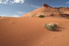 Free Desert Scenic Stock Image - 5547971