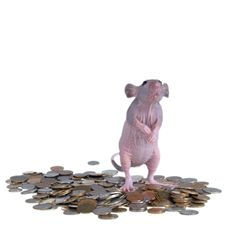 Free Naked Rat On Pile Of Money Royalty Free Stock Photography - 5549947