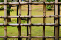 Free Bamboo Fence Royalty Free Stock Photos - 5552618