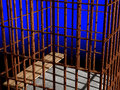 Free Metal Cage 3d, Concept Of Jail 01 Royalty Free Stock Image - 5553396