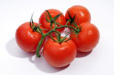Free Fresh Tomato S Royalty Free Stock Images - 5550849