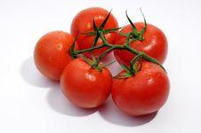 Free Fresh Tomatoes Royalty Free Stock Image - 5550856