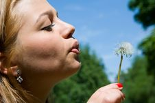 Free Girl And Dandelion Stock Image - 5550901