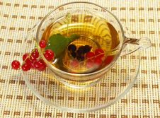 Free Currant And Herbal Tea Royalty Free Stock Photos - 5552478