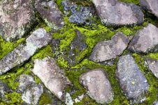 Free Stone Wall Stock Photography - 5552632