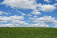 Free Green Field And The Blue Sky Royalty Free Stock Images - 5554789