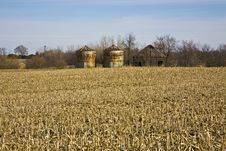 Free Silos In The Cornfield Royalty Free Stock Image - 5554906