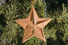 Free Christma Star Stock Images - 5557174