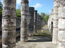 Free Thousand Columns I Royalty Free Stock Image - 5558036