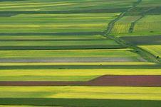 Free Coloured Fields Stock Photos - 5558733