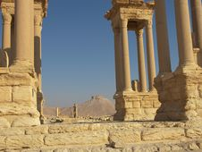 Free Palmyra, Syria Royalty Free Stock Photo - 5558755