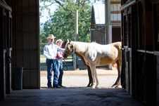 Free Cowboy, Cowgirl, And Horse - Horizontal Royalty Free Stock Photography - 5560127