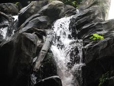 Free Waterfall Royalty Free Stock Photo - 5560295