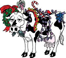 Free Holiday Cow Stock Image - 5560431