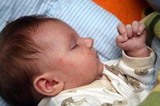 Free Sleeping Baby Stock Photos - 5560783