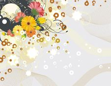 Free Exquisite Floral Background Royalty Free Stock Image - 5561976