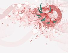 Free Exquisite Floral Background Stock Photos - 5562033
