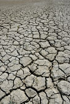 Free Cracked Earth Stock Image - 5562331