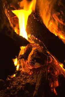 Free Camp Fire Royalty Free Stock Photo - 5562355