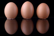 Free Three Eggs Royalty Free Stock Image - 5563306