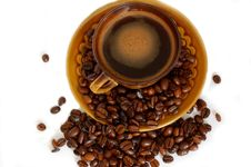 Free Cup Of Coffee Royalty Free Stock Photography - 5564727