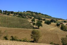 Free Umbria Hill Stock Photos - 5565203