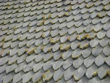 Old Tile Roof Covered By A Moss Stock Photo