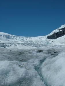Free Saskatchewan Glacier Stock Image - 5566921