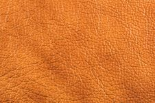 Free Natural Leather Texture Royalty Free Stock Photos - 5568848