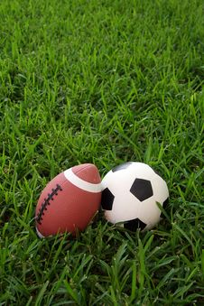 Free Sports Ball Royalty Free Stock Photography - 5568857