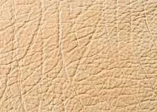 Free Natural Leather Texture Royalty Free Stock Photos - 5568908