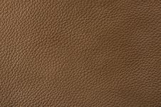 Free Natural Leather Texture Stock Photography - 5568922