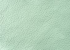 Free Natural Leather Texture Stock Photography - 5568972