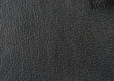 Free Natural Leather Texture Stock Image - 5569001