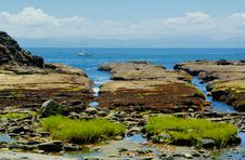 Free Rocks At The Low Tides Royalty Free Stock Photos - 5569368