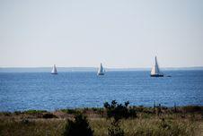 Free Sailboats Stock Photo - 5569990