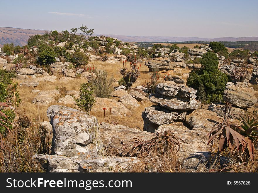 A rocky hilltop in the Skurweberg, South Africa