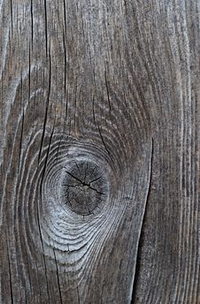 Free Wood Texture Stock Image - 55610971