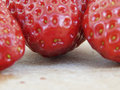 Free Strawberries Royalty Free Stock Image - 5570816