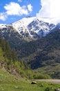 Free Caucasus Stock Photo - 5574500