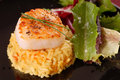 Free Scallop On Bed Of Saffron Rice With Salad Stock Image - 5578341