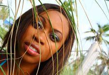 Free Female Headshot Royalty Free Stock Images - 5570189